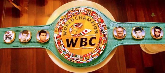 Cintura WBC Consiglio Mondiale del Pugilato a Giancarlo Garbelli. La cintura di cuoio verde ha raffigurate le bandiere di 181 nazioni che compongono il WBC con le foto di Giancarlo Garbelli, Muhammad Ali e Joe Louis con il Presidente WBC Josè Sulaimàn e sul retro la firma di quest'ultimo.